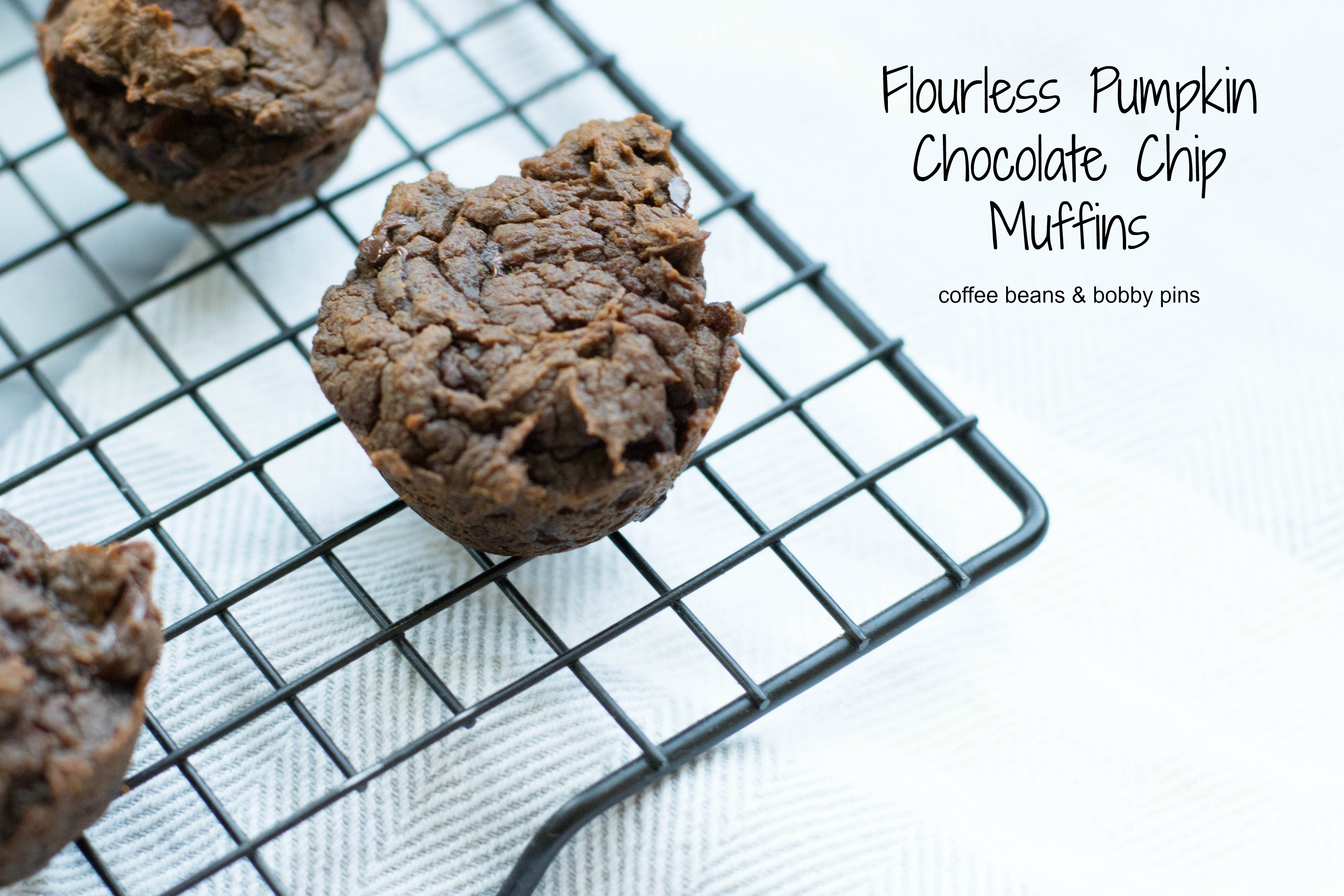 Fitness Thursday: Flourless Chocolate Pumpkin Muffins